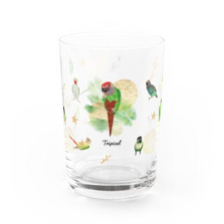 ウロコインコグラス Water Glass