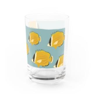 チョウチョウウオの水槽 Water Glass