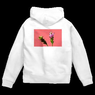 CALAKUEN(SOIL)のCurcuma alismatifolia -pink Zip Hoodies