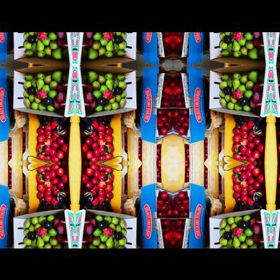 フルーツ • 果物 • 野菜 • 食べ物の総柄Tシャツ