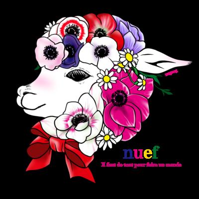 Alpaca anemone bouquet