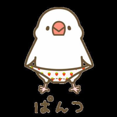 ぱんつ文鳥さん