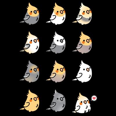 Chubby Bird オカメインコ大集合
