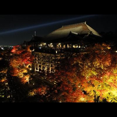 京都って美しい