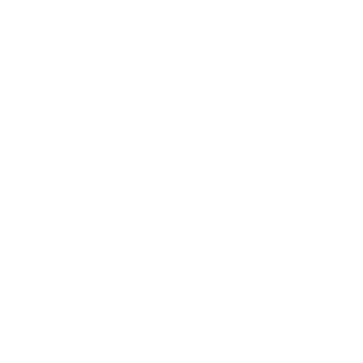 これは鳥です