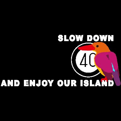 SLOWDOWN+いきもの