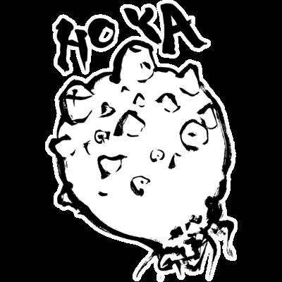 ホヤ ほや HOYA 海鞘