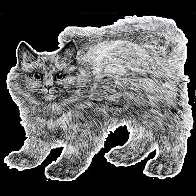 ふわふわの仔猫のオモイデ