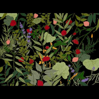 Herbal case