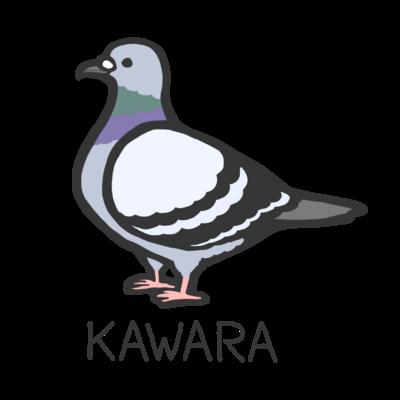 ハト ポップ KAWARA