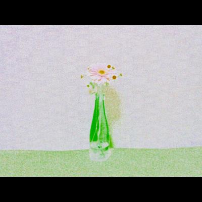 瓶入りのガーベラ