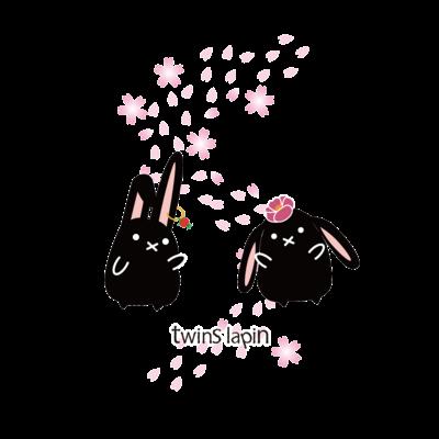 twins lapin(黒い双子うさぎ)