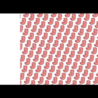 ピンクマウスシリーズ