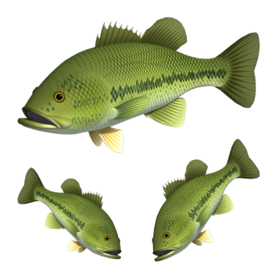 淡水魚(ステッカー)