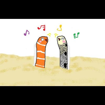 ニシキアナゴとチンアナゴ