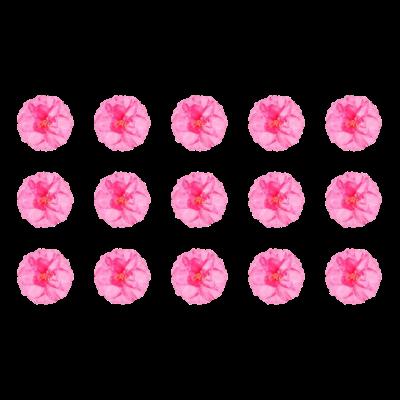 お花シリーズ