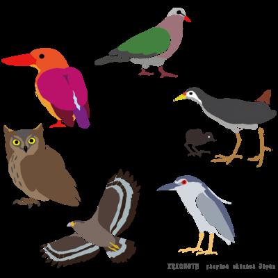 絵柄:鳥類
