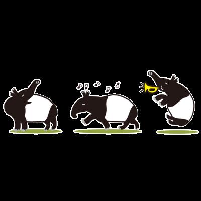 楽しいマレーバクの三兄弟「3バクトリオ」