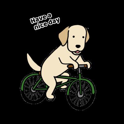 bicycle シリーズ