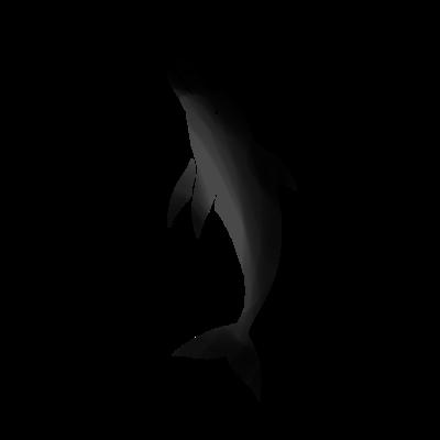 イルカのデザイン
