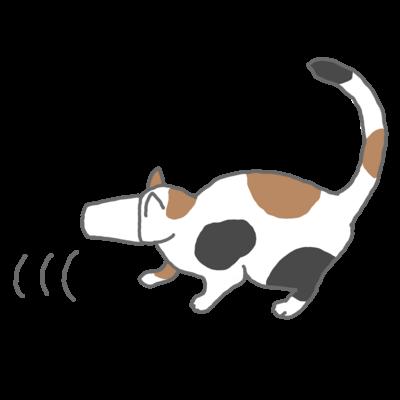 紙コップから頭が抜けず後ずさりする猫
