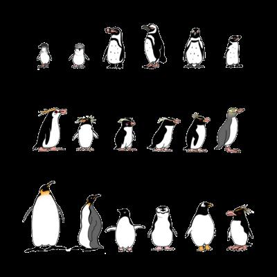 ペンギンTシャツ