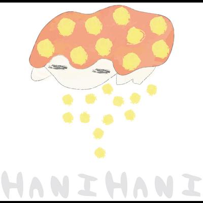 hanihani かめさん