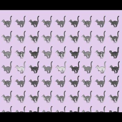 マニアック(猫)シリーズ