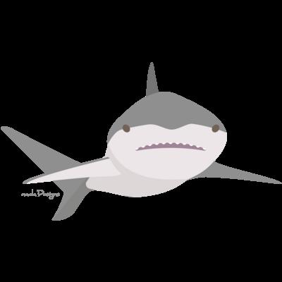 サメTシャツ-サメ画家さかたようこ