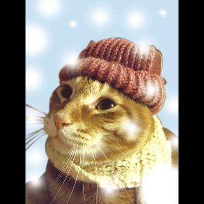 冬のチビ太