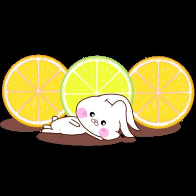 うさころと柑橘フルーツ