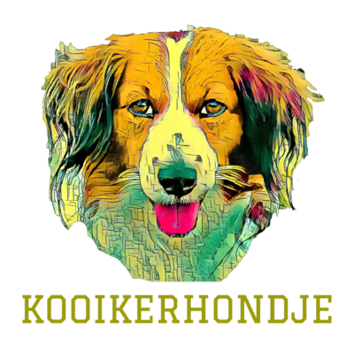 Kooikerhondje(うちの子グッズ)