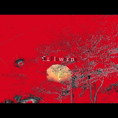 嶺上flowering                 (ロゴ)