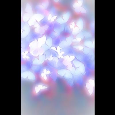 Butterfly(Ⅰ)