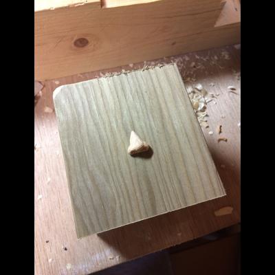 木彫りの鼻