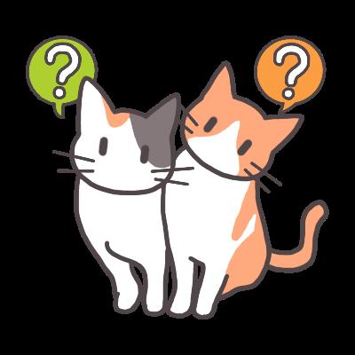 猫のコロリン首かしげ??