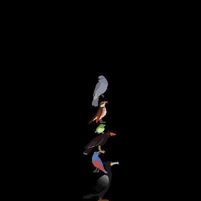 edamametoichiと鳥たち