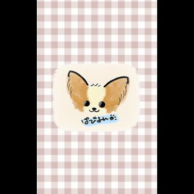 パピヨン♡