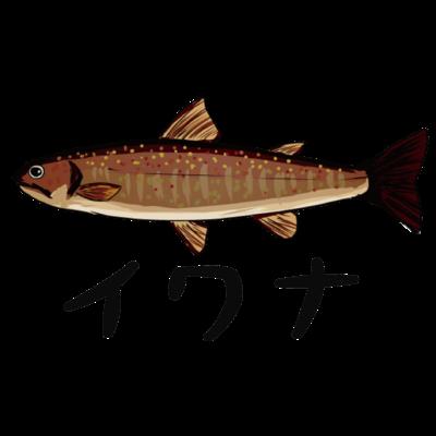 釣り好きにオススメ魚のグッズ