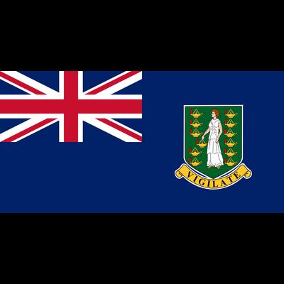 国旗 胸ロゴ