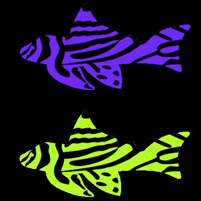 ゼブラ柄の熱帯魚
