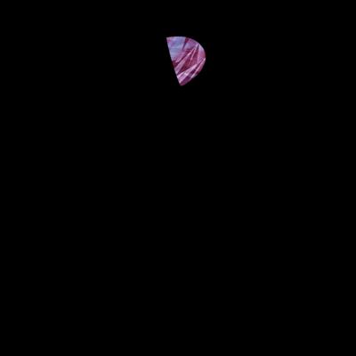 soysio010