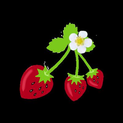 苺・いちご・イチゴ・strawberry・ストロベリー・🍓