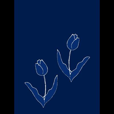 チューリップ・tulip・🌷
