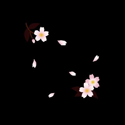 桜-Sakura