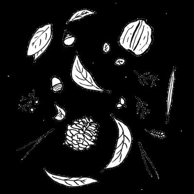 森の調べ モノクロ