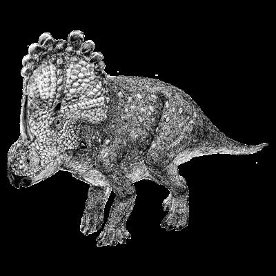 Sinoceratops(ペン画)のオモイデ