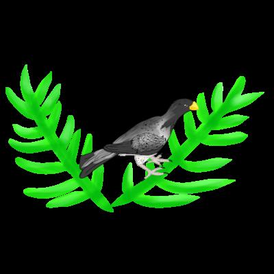 ハイイロエボシドリ