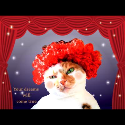 【A】ミュージカルな三毛猫さん