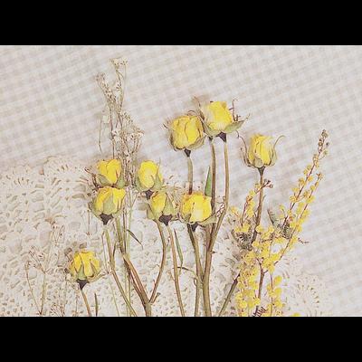 flower series